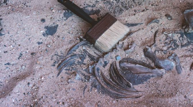 [HUMEUR] Archéologues à l'écran !